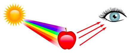 The scientific explanation why red exists.