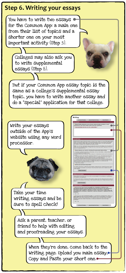 guide-dogs-p8.png