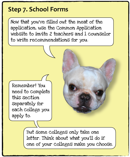 guide-dogs-p9.png