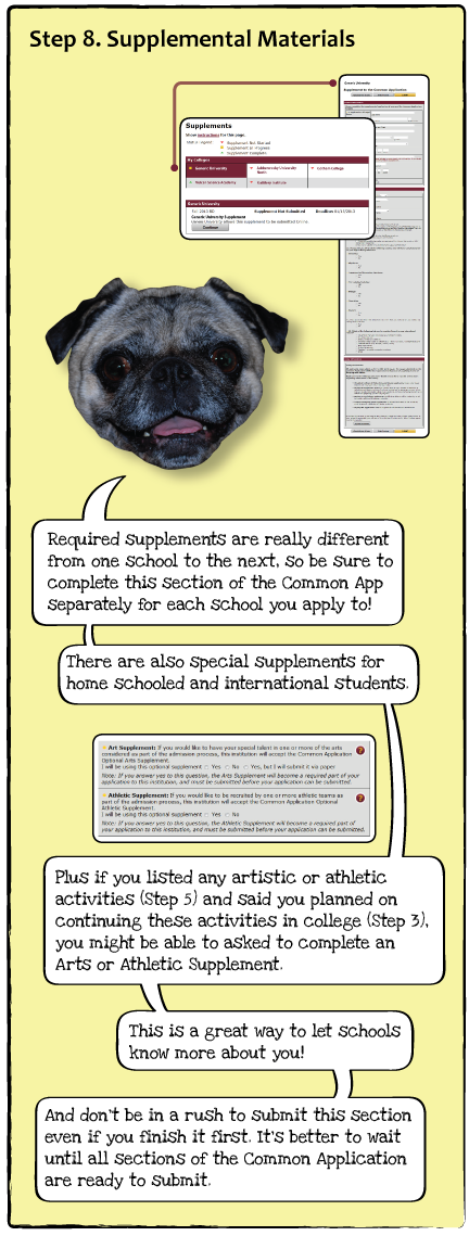 guide-dogs-p10.png