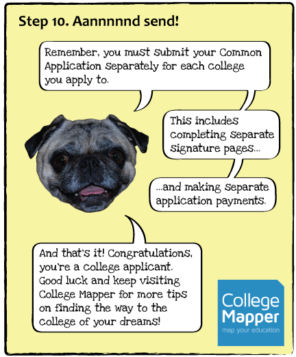 guide-dogs-p12.png