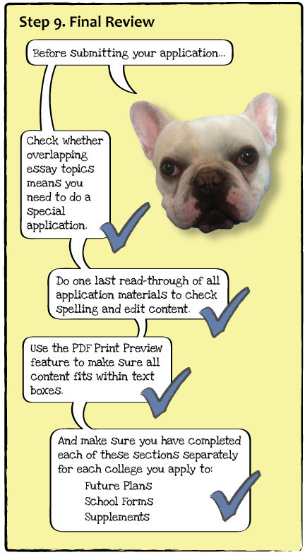 guide-dogs-p11.png