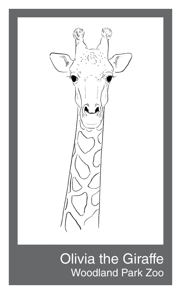 Olivia-the-giraffe.png