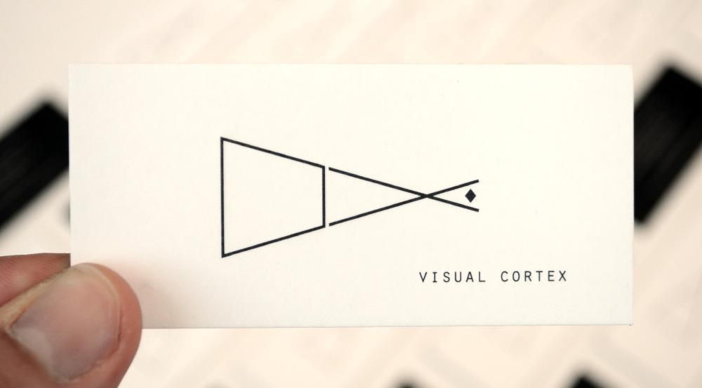 6. Visual Cortex