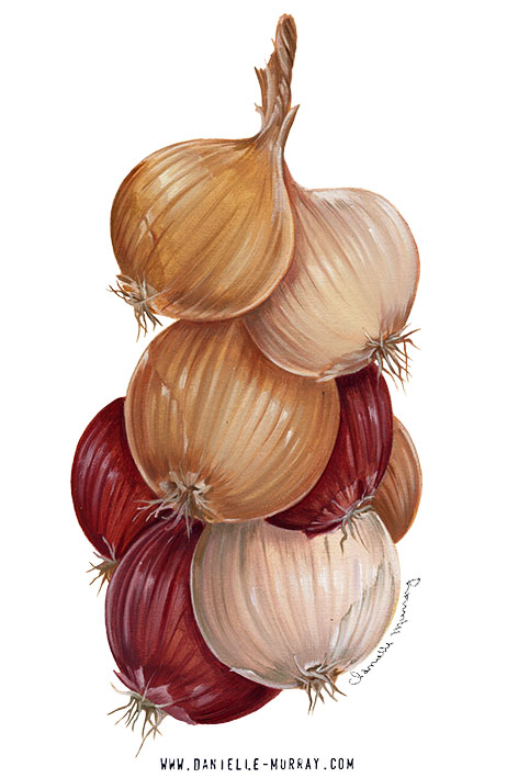Danielle Murray, Onion Painting
