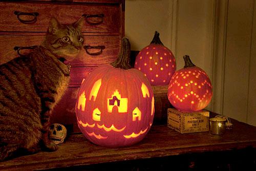 danish-pumpkins.jpg