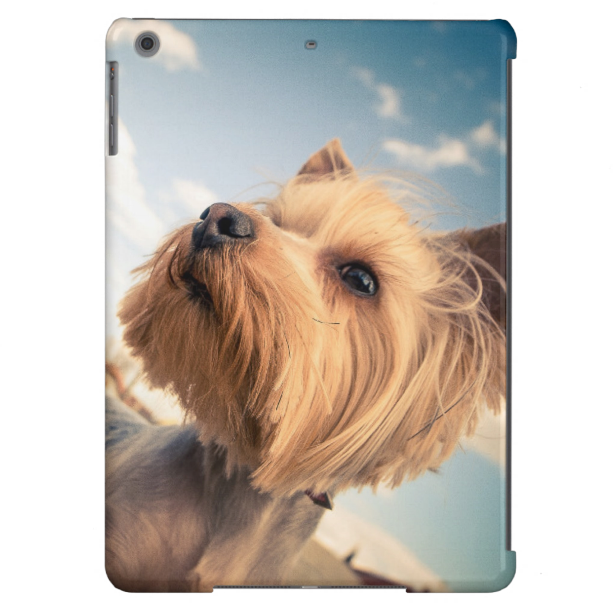 Custom Photo iPad Air Case