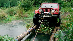 Makeshift bridge. Photo courtesy of the Discovery Channel