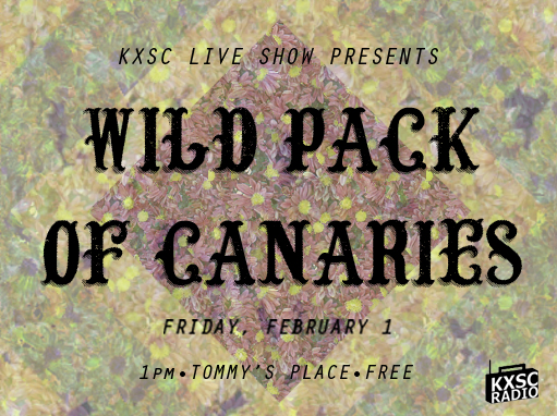 wild pack of canaries.jpg