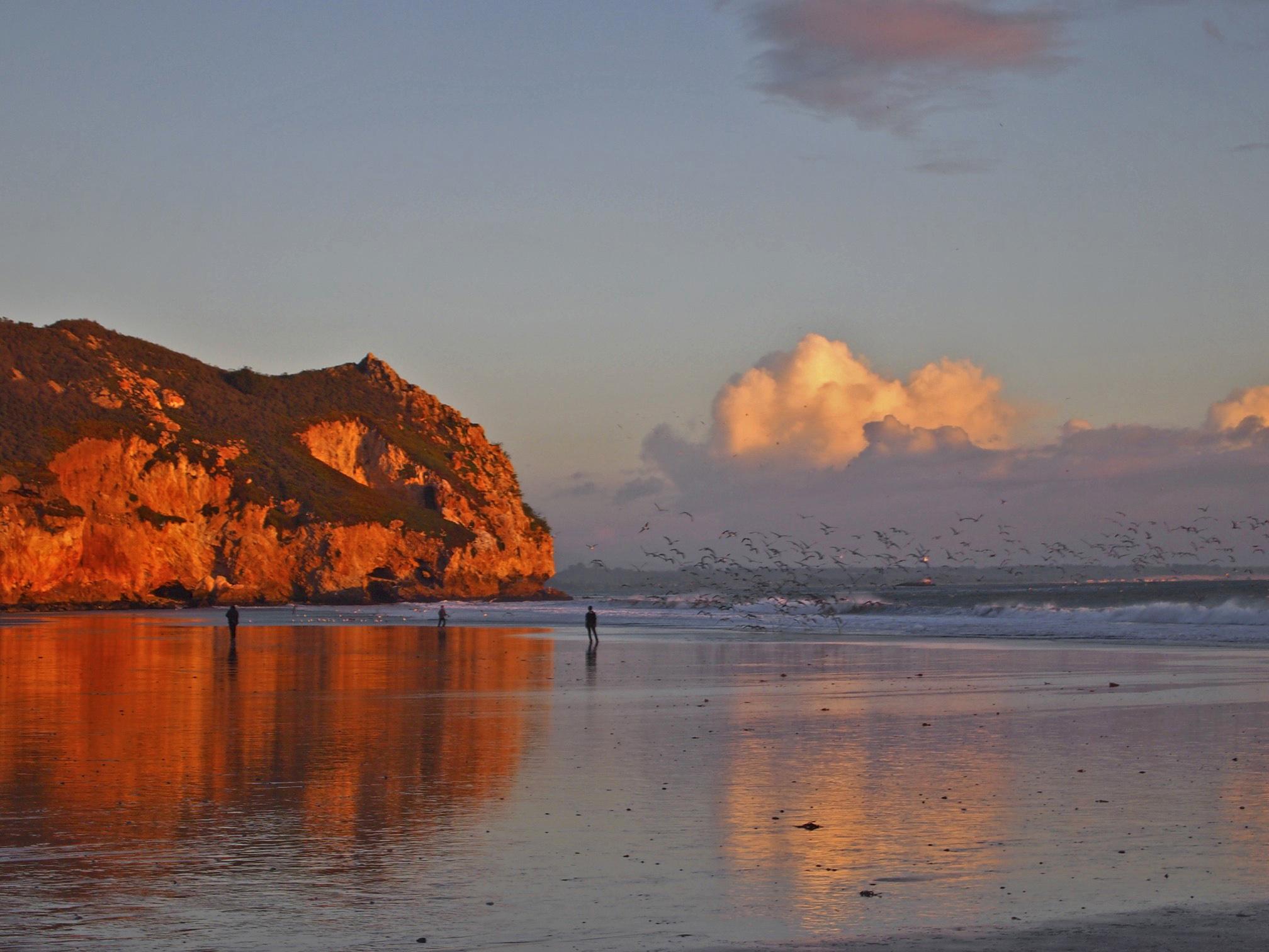 Avila Beach, January 11, 2013 Sunset with a cloud of gulls