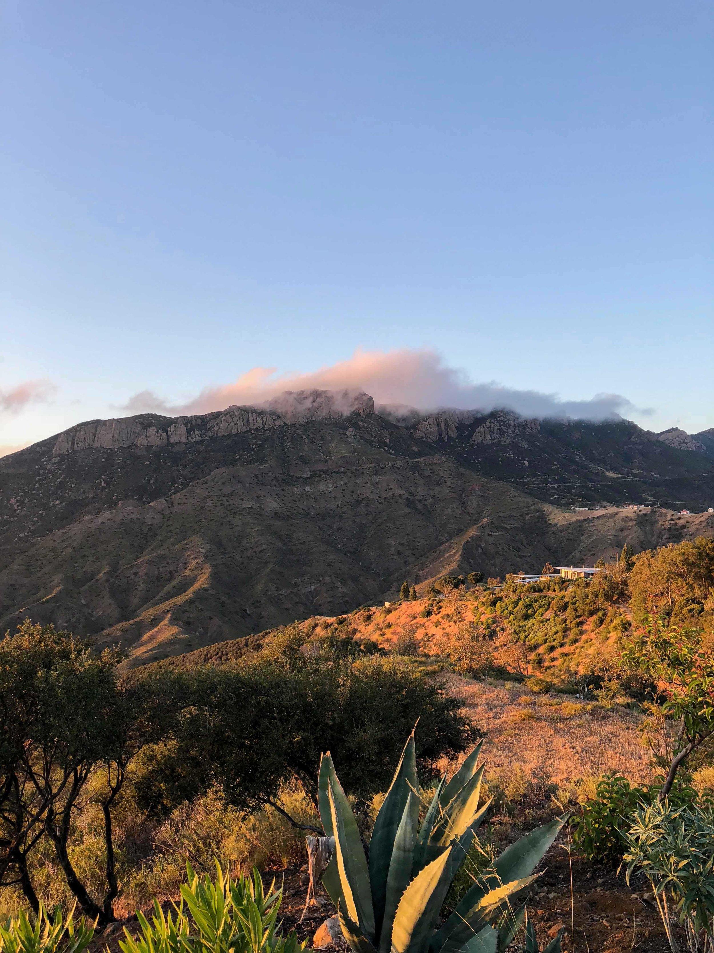 S.E.A.-Studio-Environmental-Architecture-David-Hertz-FAIA-Tony-Duquette-Xanabu-Malibu-California-adaptive-reuse-sustainable-regenerative-restorative-green-design-airplane-upcycle-recycle-found-object-historic-preservation-Hollywood-set-bony-ridge-6.jpg
