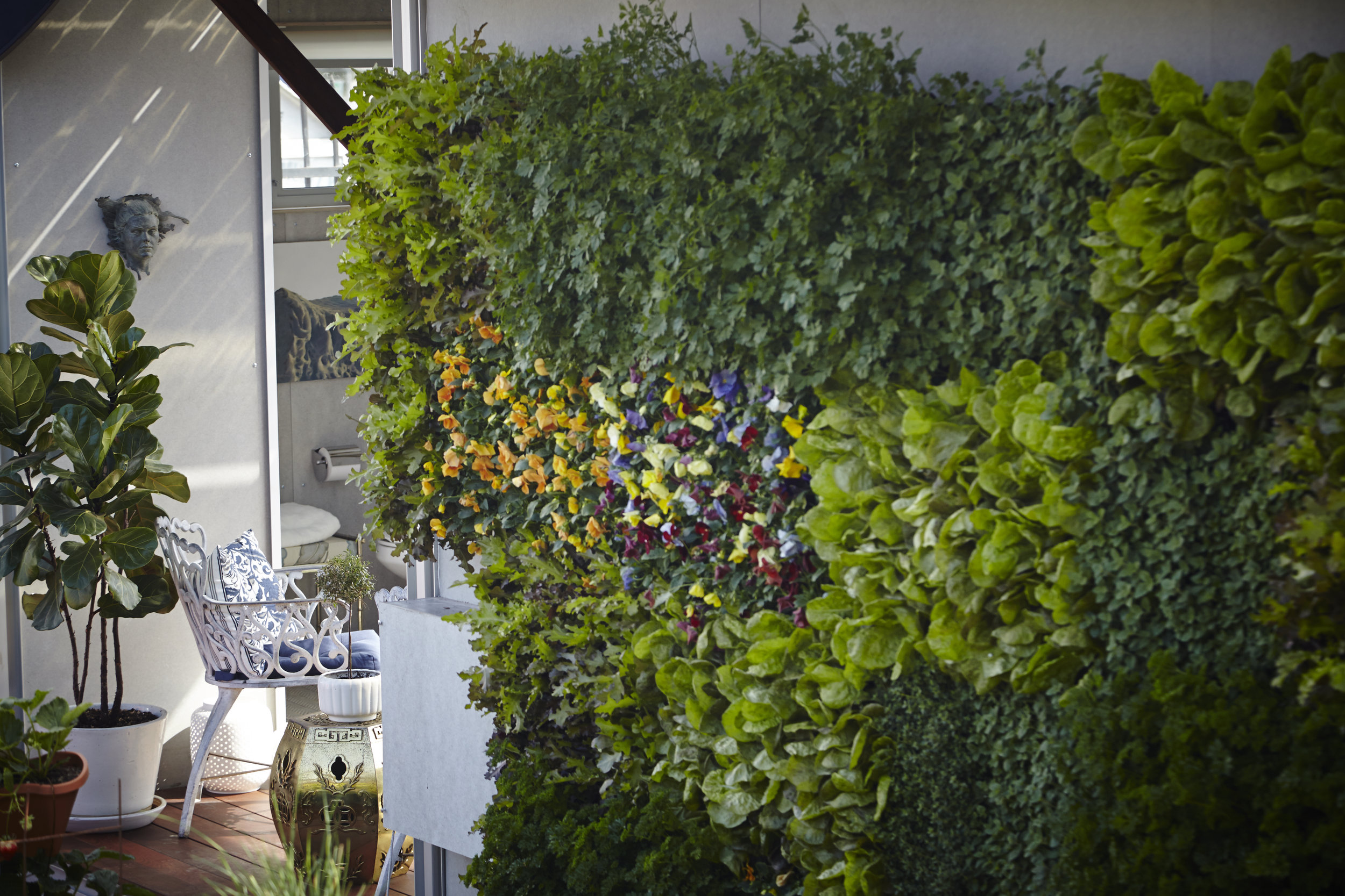 S.E.A.-Studio-Environmental-Architecture-David-Hertz-FAIA-Airbnb-Ecopod-Venice-Beach-California-sustainable-regenerative-restorative-green-design-passive-systems-natural-ventilation-radiant-solar-panels-greenwall-installation-Abbot-Kinney-modern-8.jpg