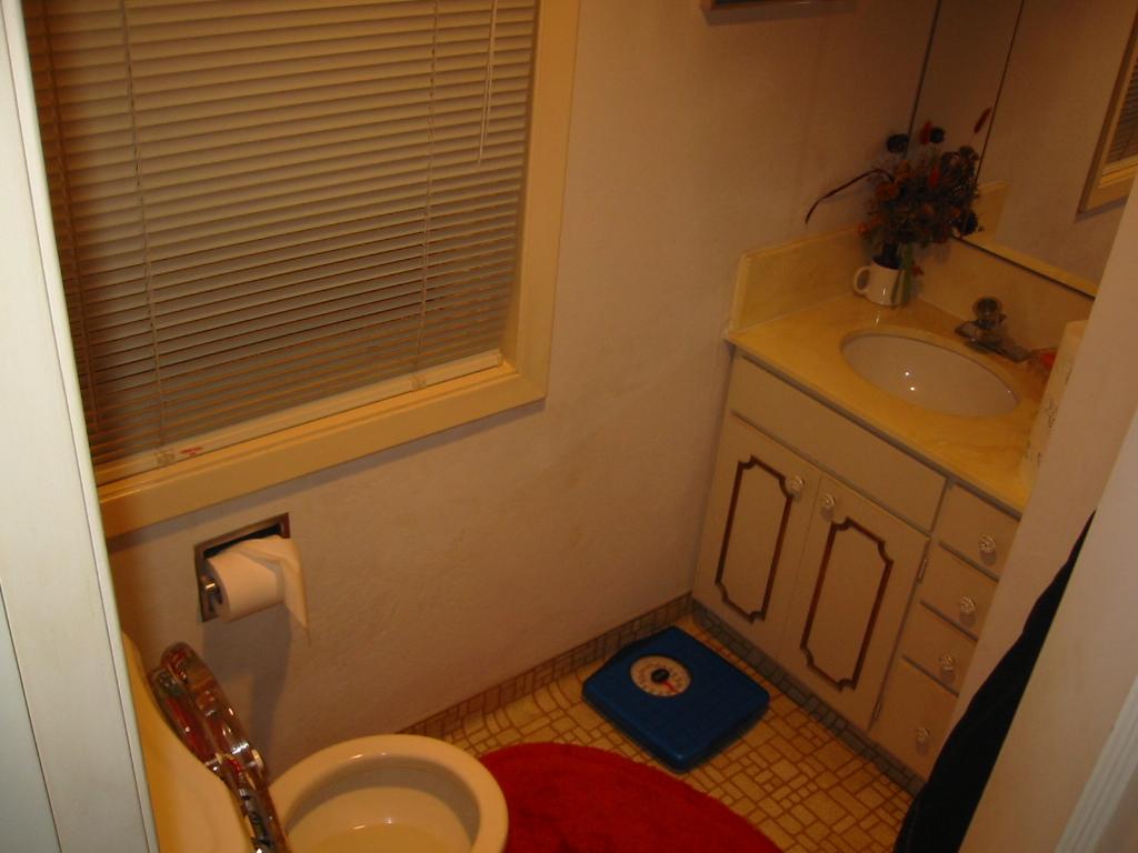 Lee BEFORE bathroom.JPG