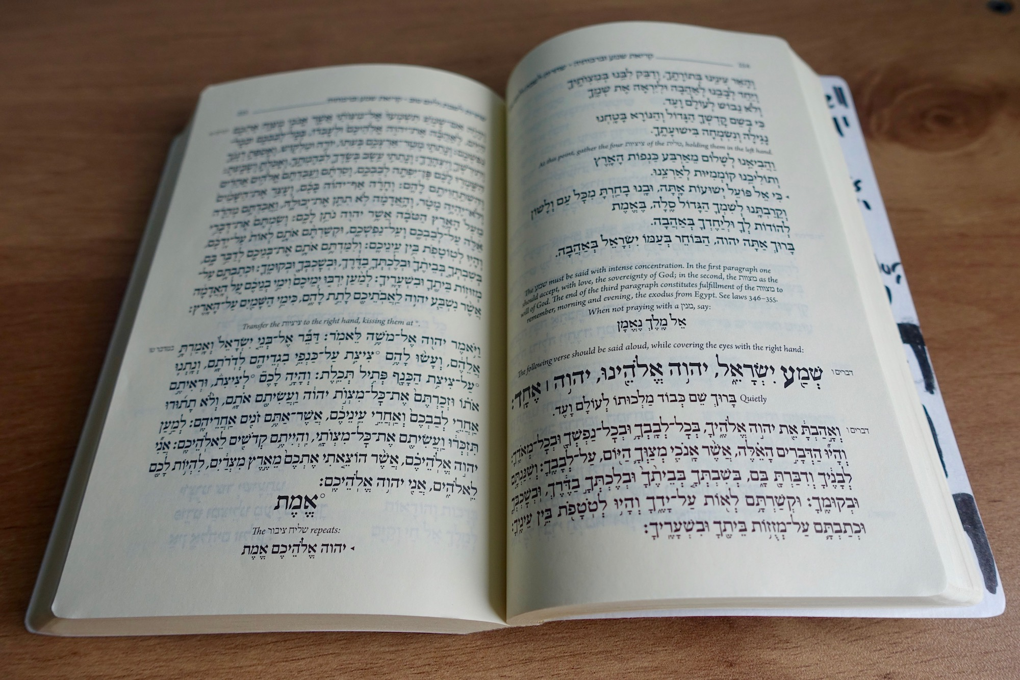 My siddur, to give you a sense of its vibe (yes, it's perfectly religiously okay to post this photo. I checked.)