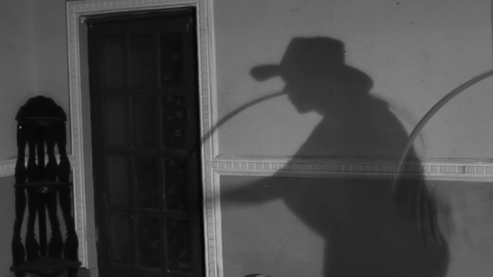 Shadow_whip_1.jpg