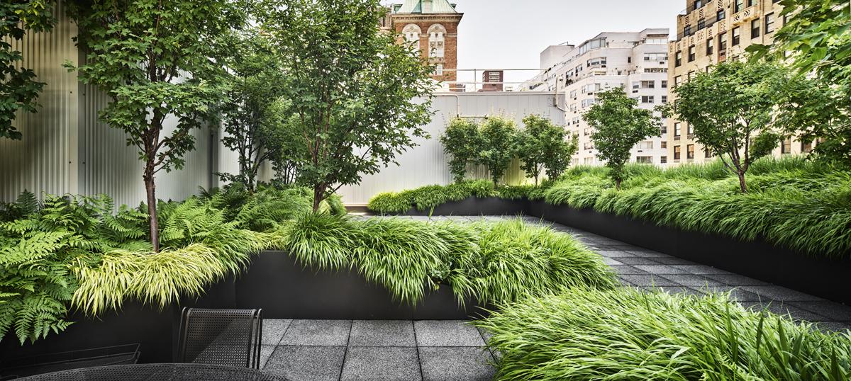 Manhattan Roof Garden Vi K Hoyt Architecture Landscape