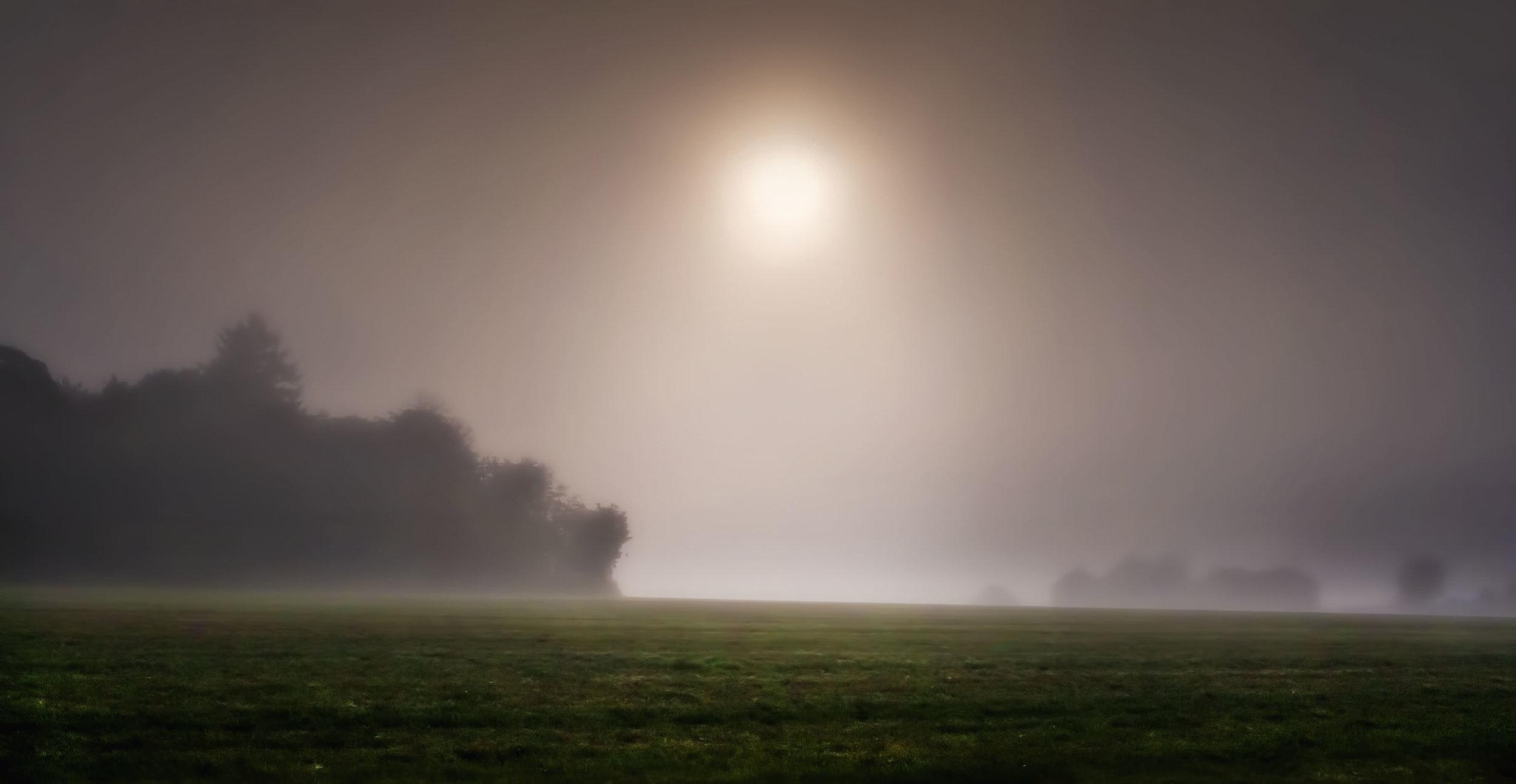 Follow The Light.jpg