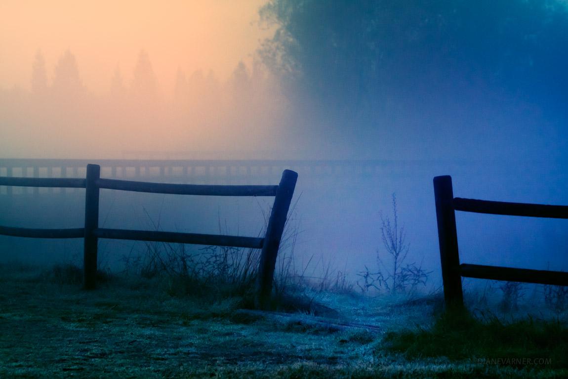 Dream of Dawn