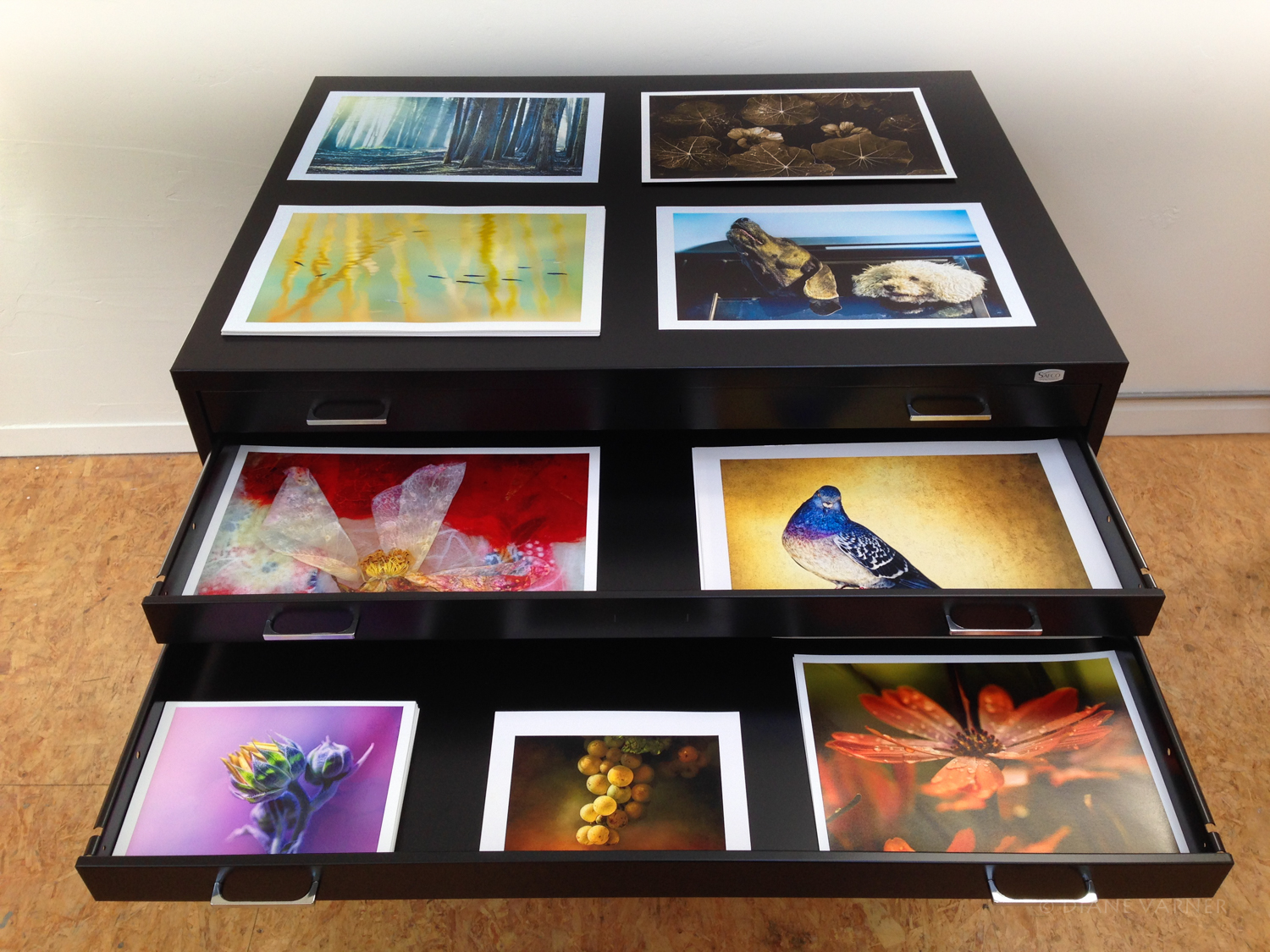 FLAT FILES - PRINTED IMAGES