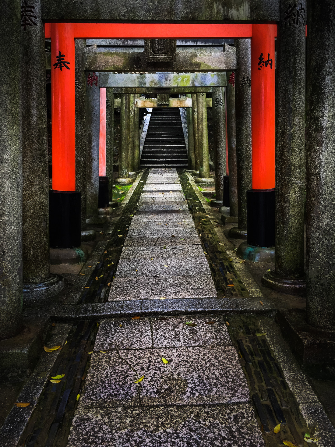 Shrine Pathway, Kyoto - 1