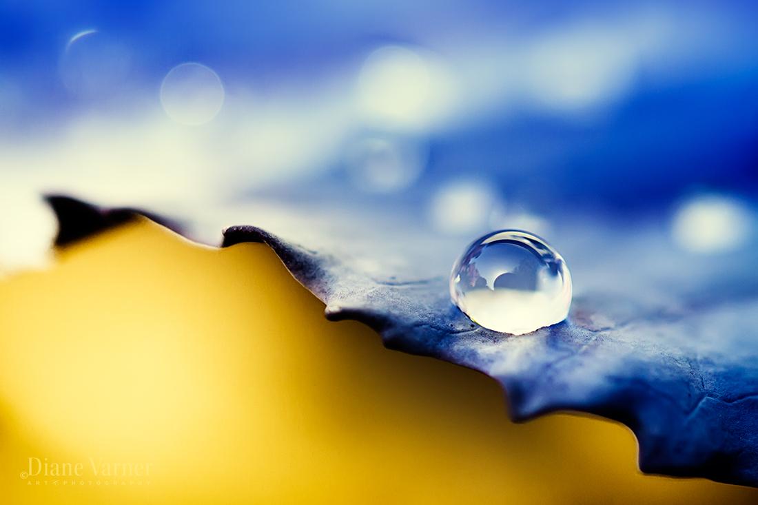 Between the Spaces - Waterdrop