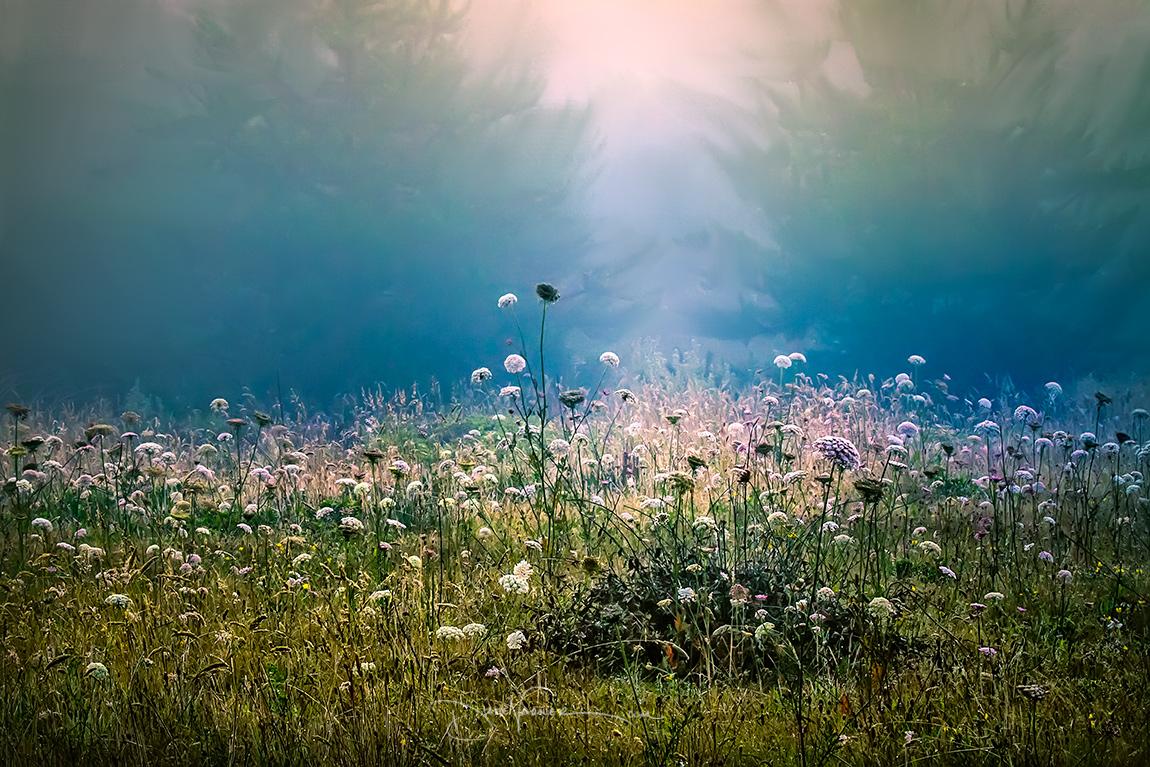 poetry_prayer_9361_varner.jpg