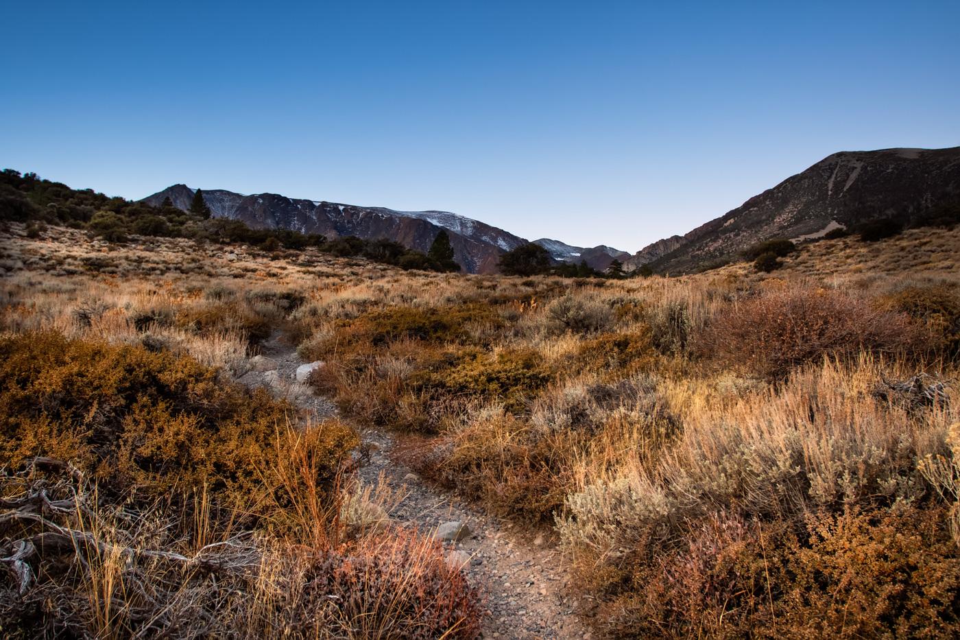 Early Morning Landscape Eastern Sierra