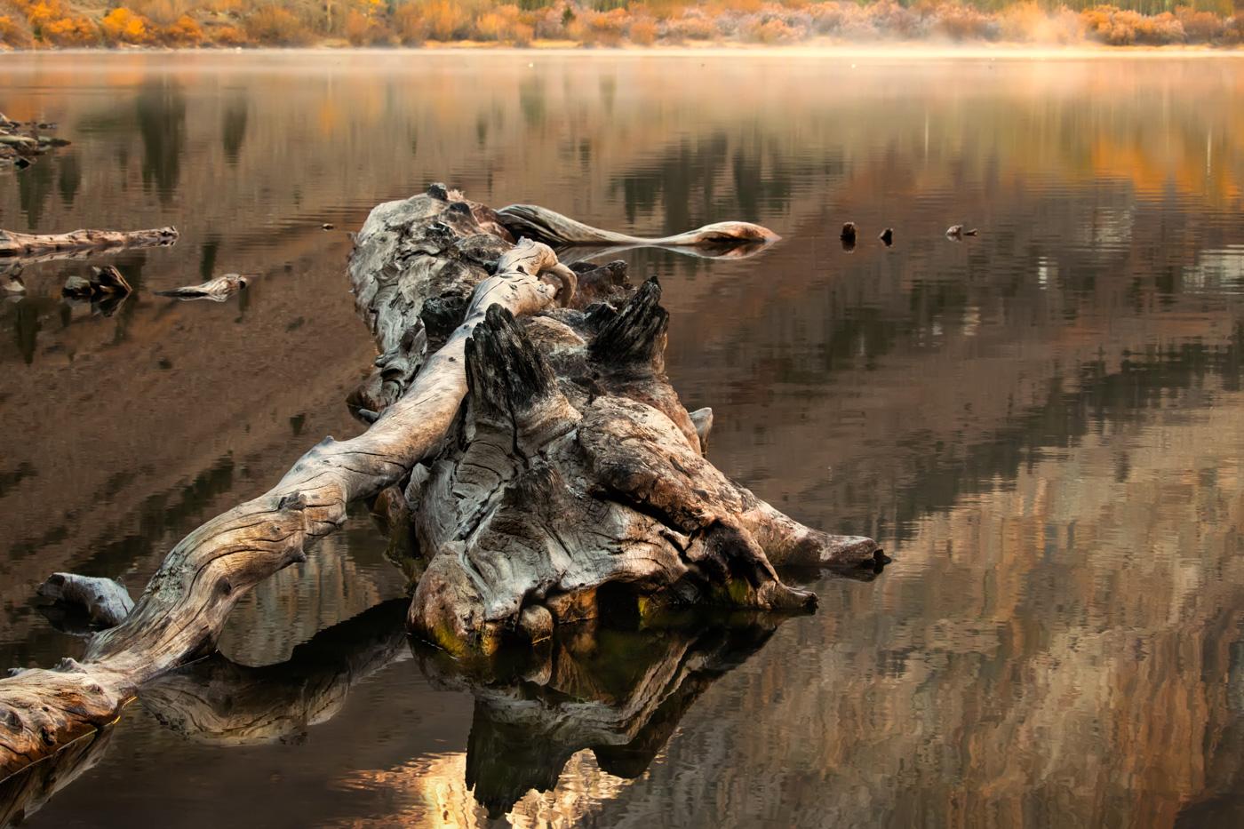 Drifting in Autumn - Parker Lake - Eastern Sierra