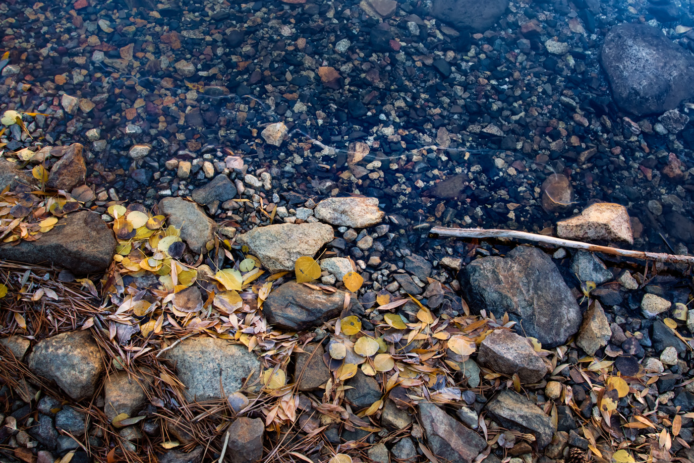 Icy Autumn Shore at Parker Lake