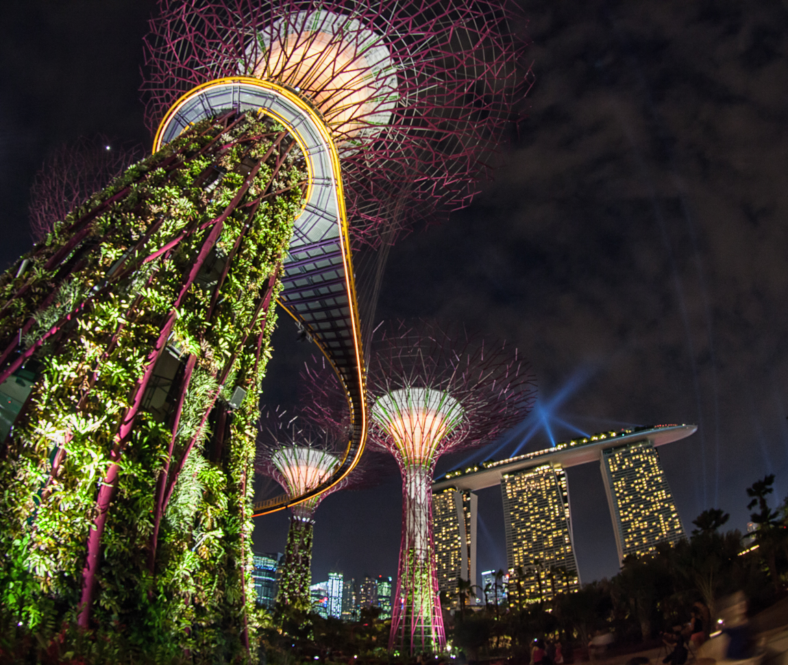 Supertrees at Night at Gardens by the Bay