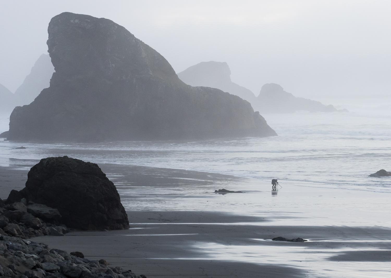 A foggy evening along southern Oregon Coast.