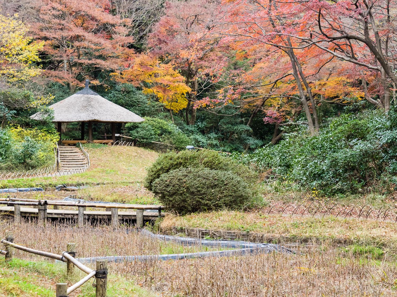 Winter view of Meiji .