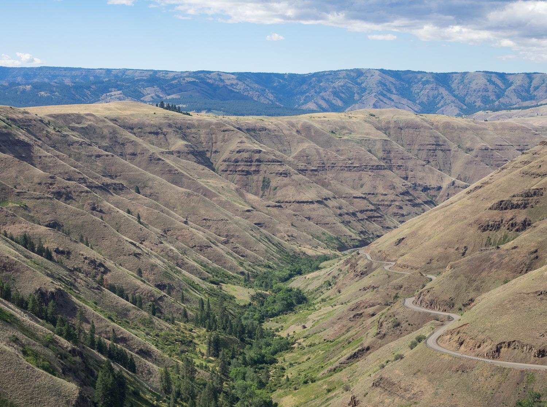 Rattlesnake Summit View