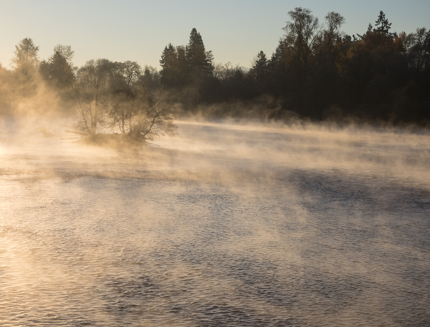 Cold Morning Mist on Willamette River