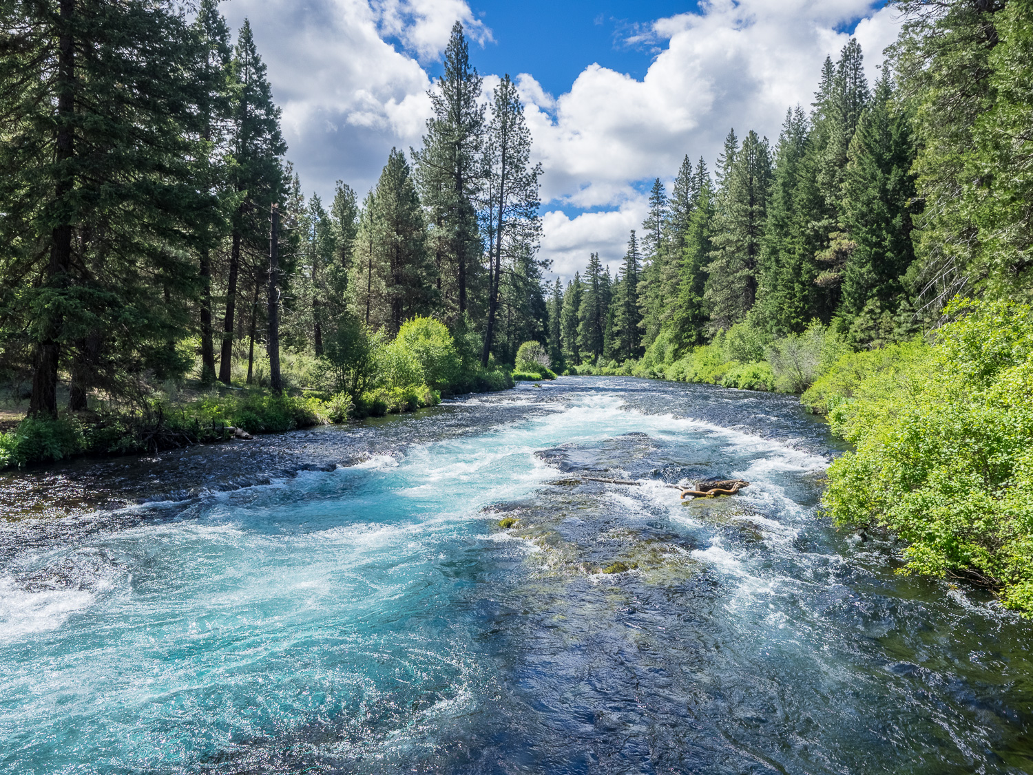 Metolius River at Wizard Falls