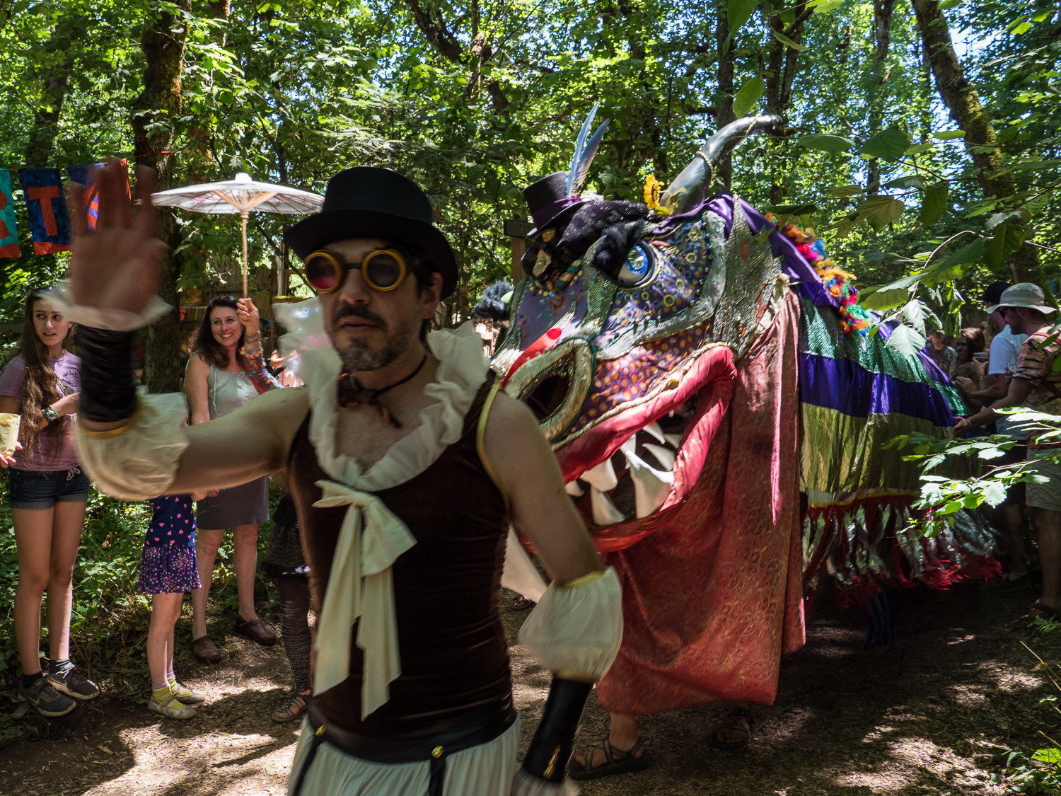 Parade with Dragon in Forest-7080425.jpg