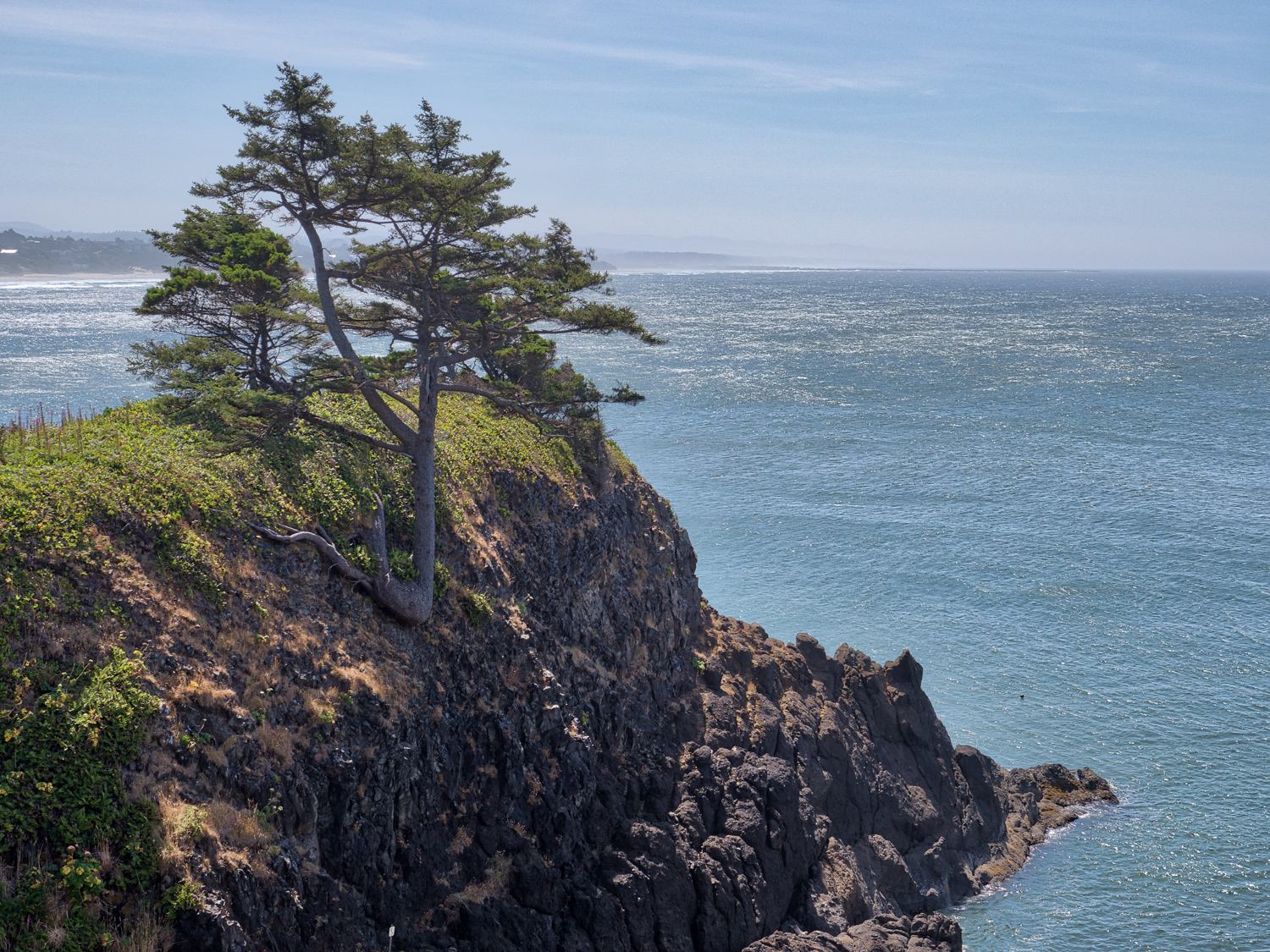 Yaquina Outstanding Natural Area