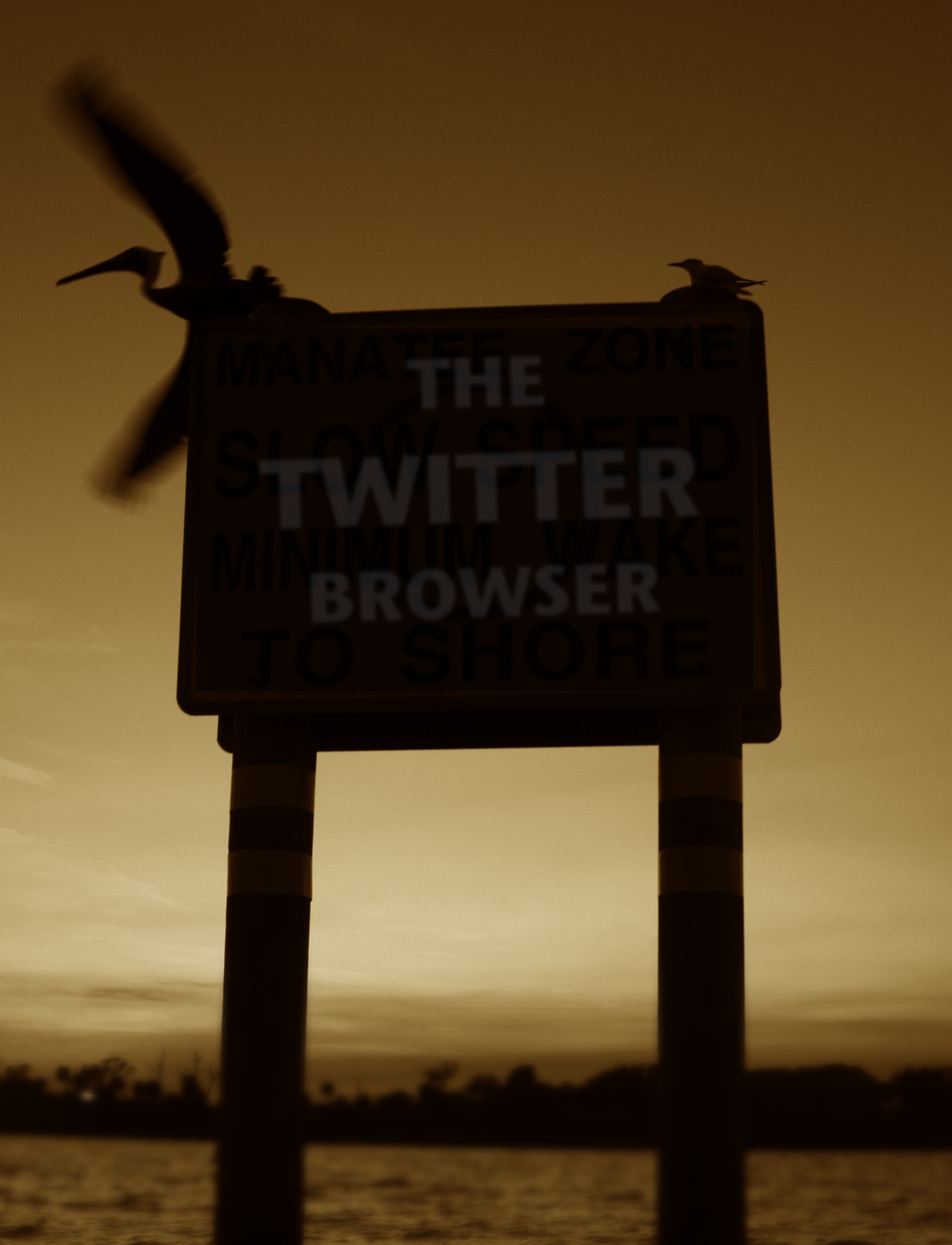 Tall Twitter Browser PNG.png