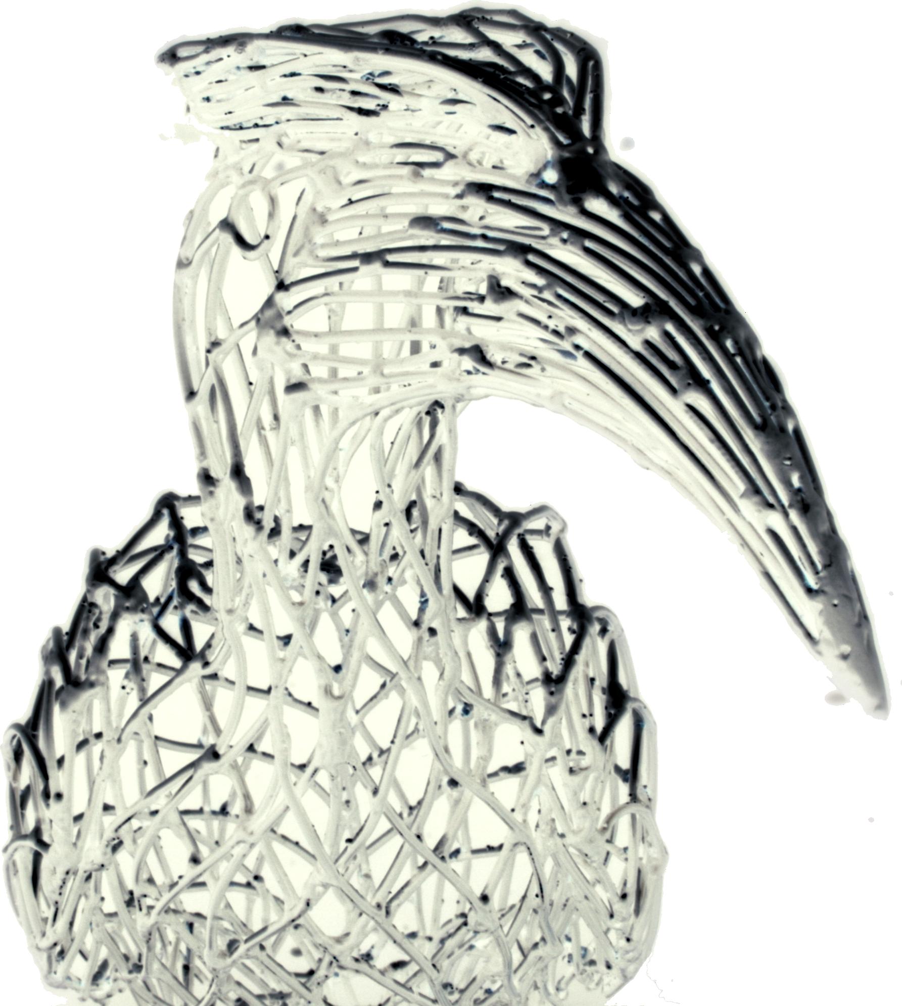 Developer Bird PNG.png