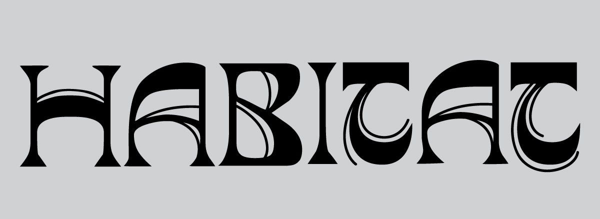 habitat skateboards typography