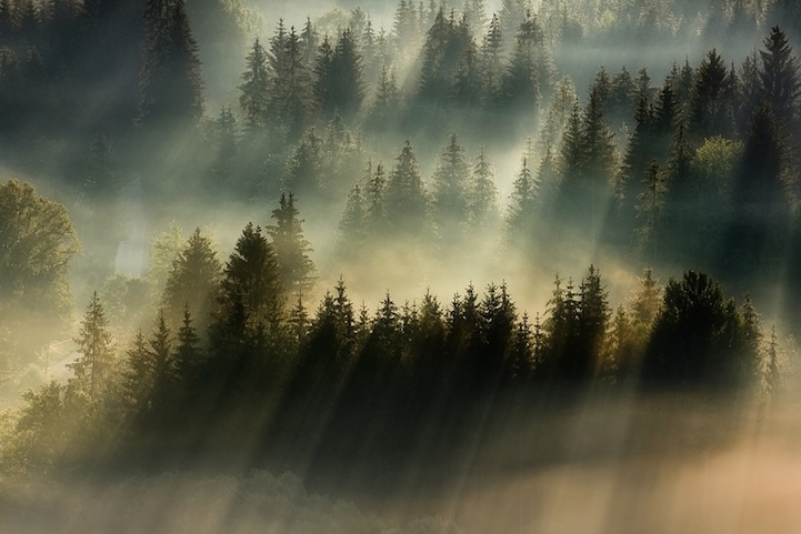 Beautiful landscape photos of morning fog in Eastern Europe by Boguslaw Strempel