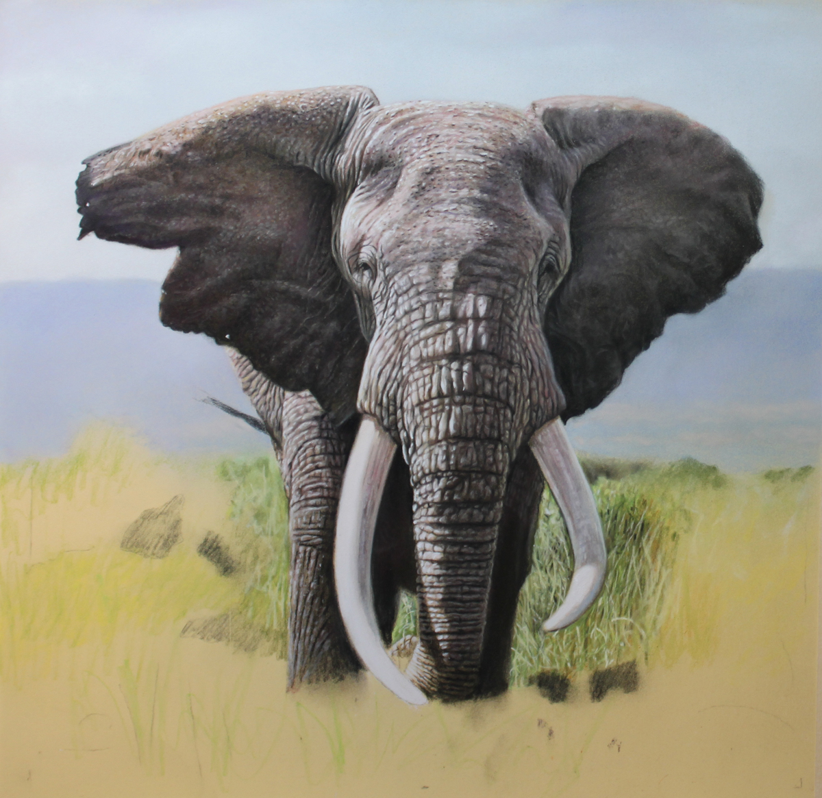 Guide to Wildlife painting