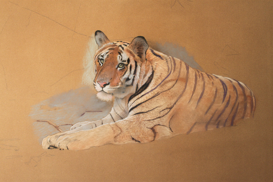 How to paint a tiger