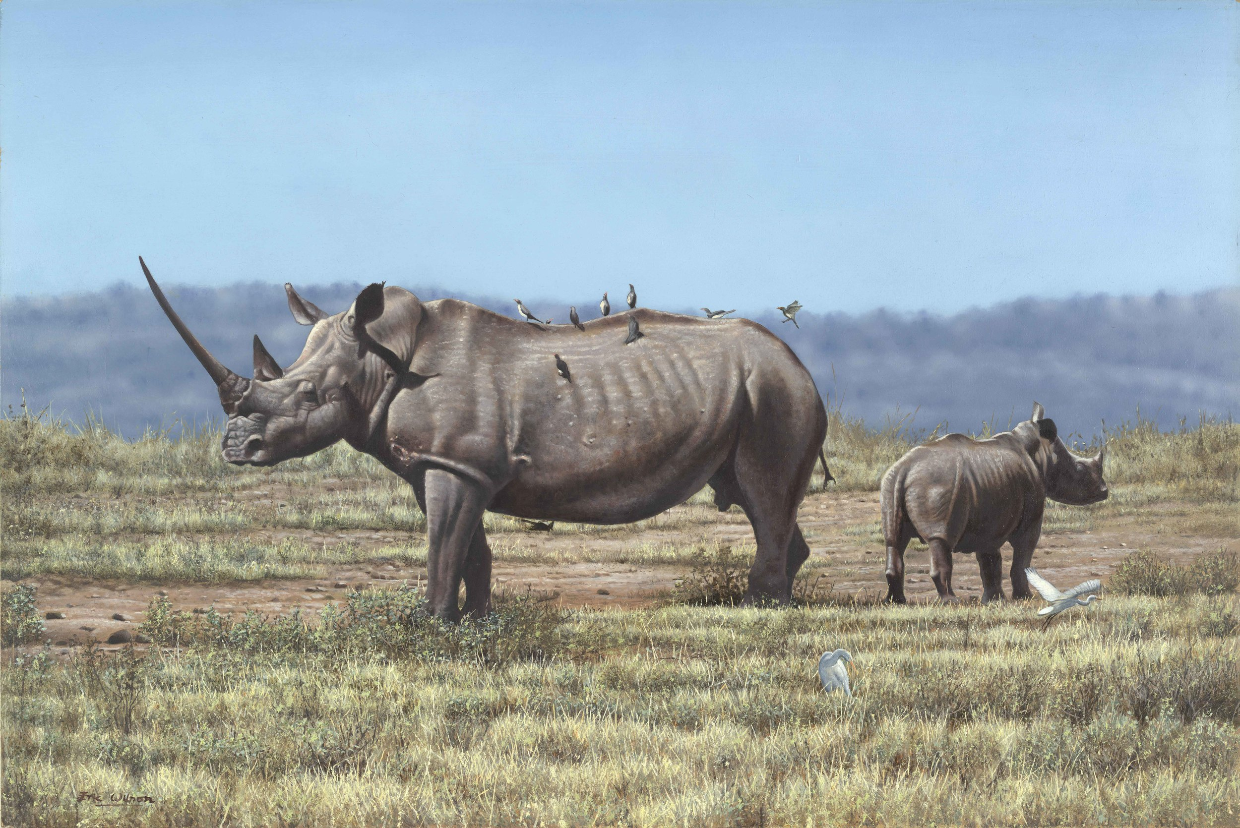 Rhino Painting. Oil painting of a rhino with calf by wildlife artist Eric Wilson. Oil on board. Original rhino painting for sale.