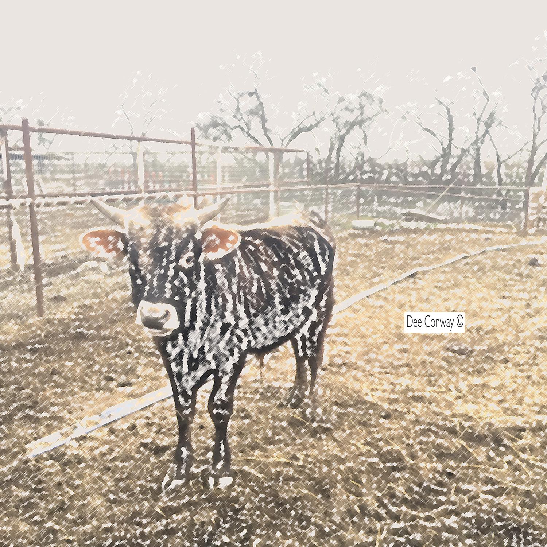 - cow: a basic farm animal