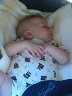 sleepy Seth.jpg