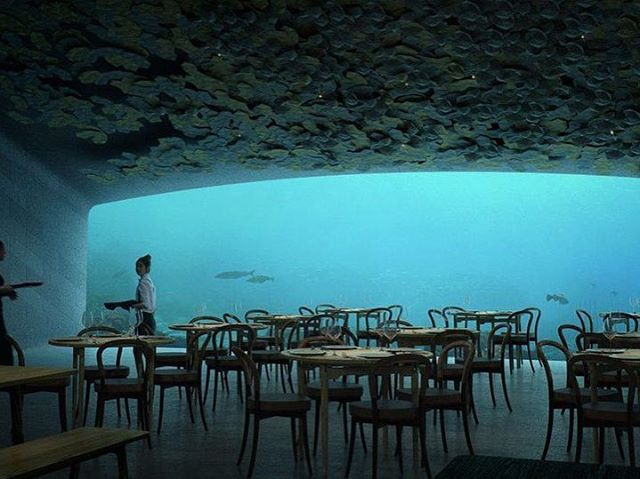 It was an honor to perform at the opening of underwater restaurant Under this week. The deepest backdrop I ever had.  #under