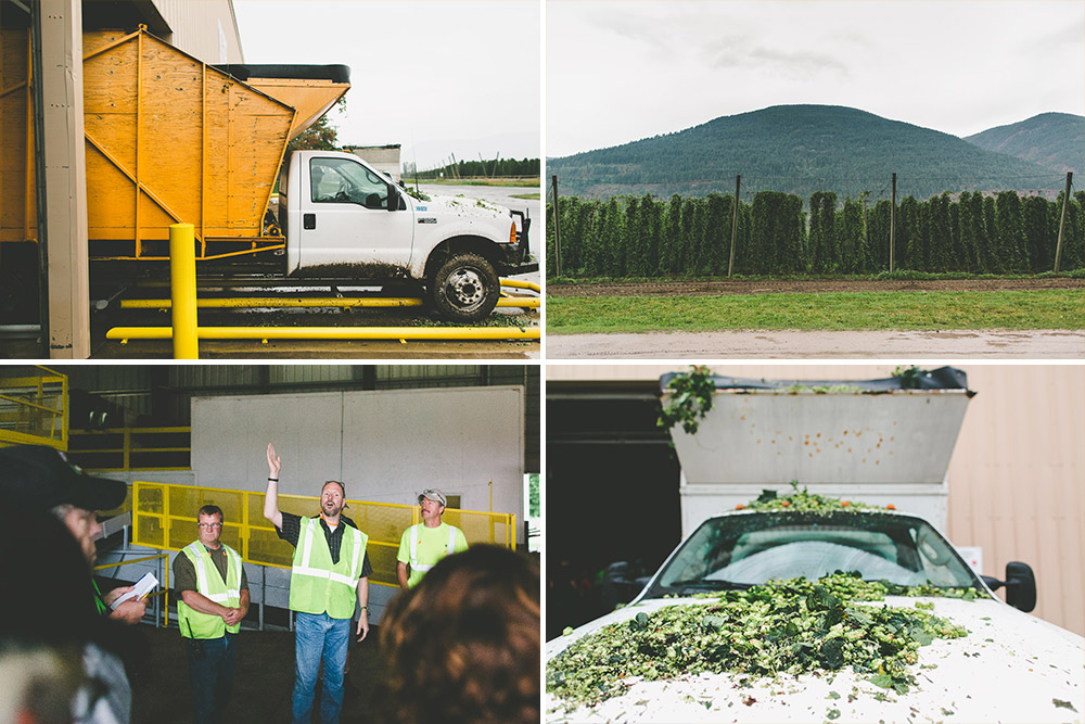 Plant Manager, Ed Atkins and his team provide an overview of the hop processing machinery