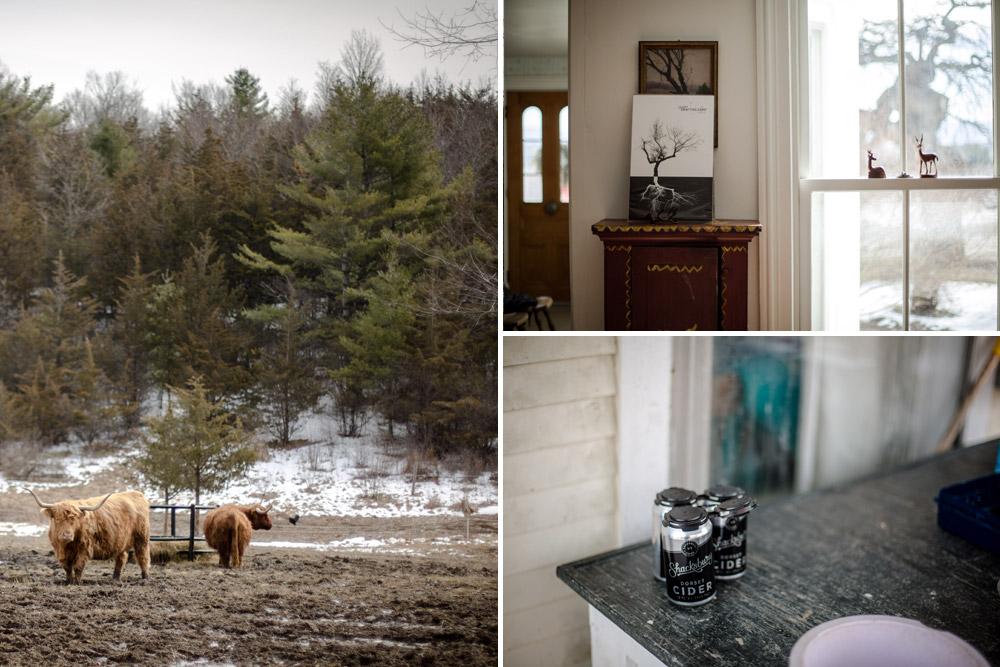 2_story_collage.jpg