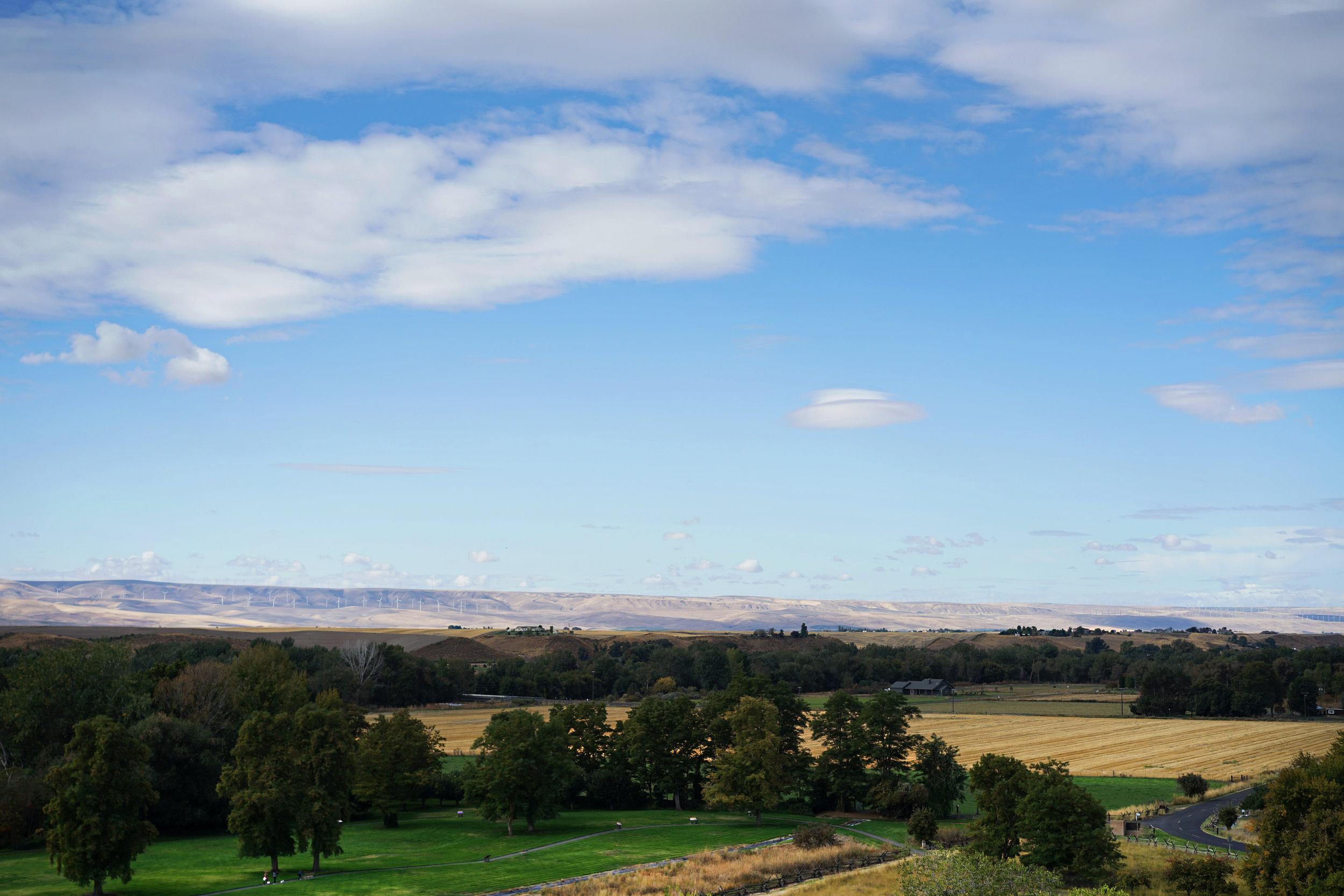 Pacifico Clara Worm Ranch 7.jpg